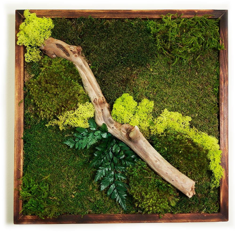 moss wall art 18x18 wabi moss. Black Bedroom Furniture Sets. Home Design Ideas