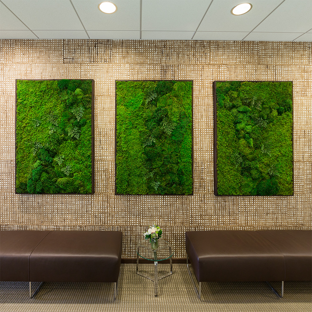 moss wall art by wabimoss green wall art for your interior space. Black Bedroom Furniture Sets. Home Design Ideas
