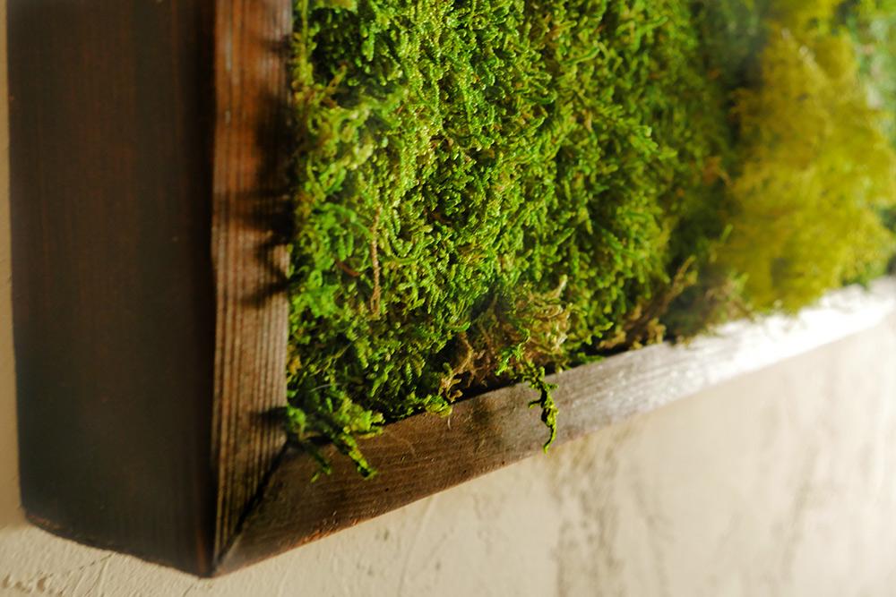 moss wall art 36x18 with driftwood wabimoss. Black Bedroom Furniture Sets. Home Design Ideas