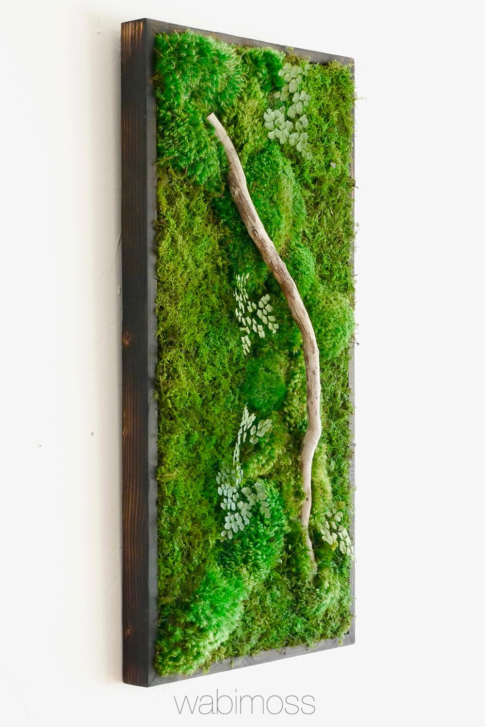Moss Wall Art 36x18 With Driftwood Wabimoss