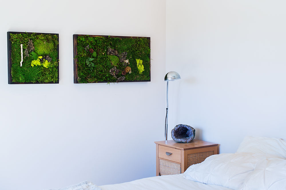 hanging moss art