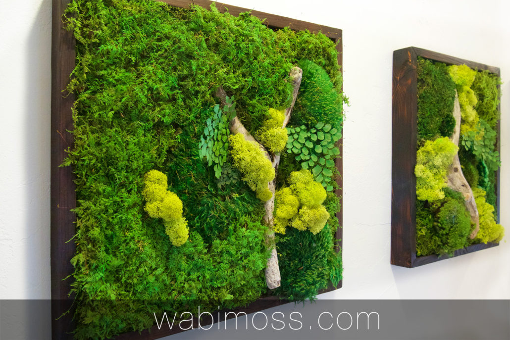 Moss Art Gallery Moss Art Pieces And Projects Wabimoss