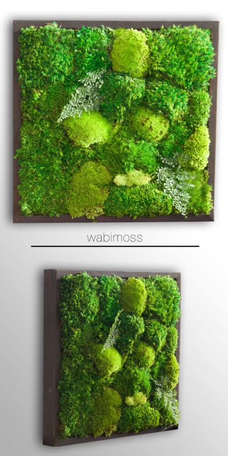 small moss artwork