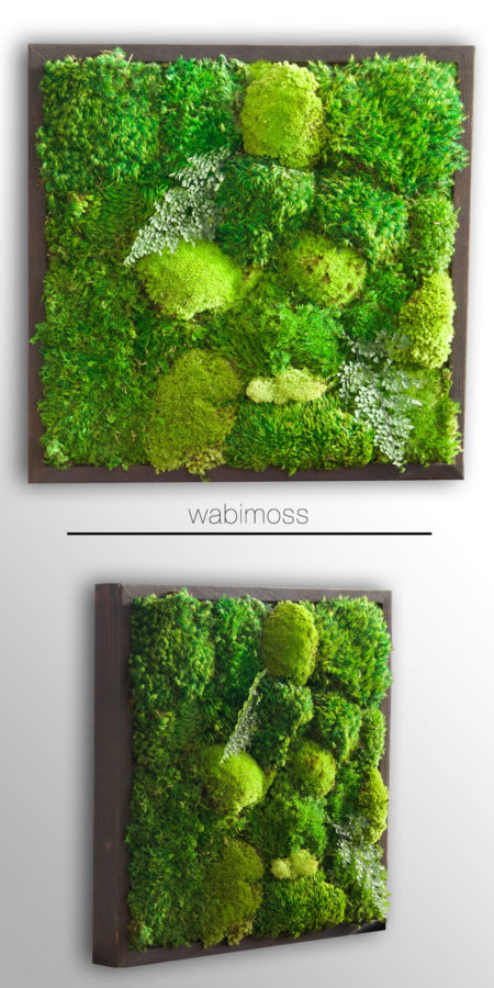 small moss artwork