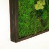 moss wall art 18x18