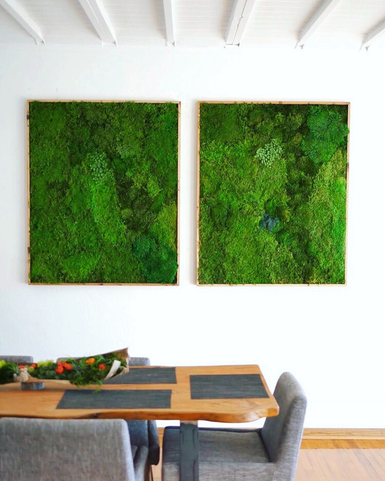Colorful Rooms Moss: Moss Wall Art By WabiMoss