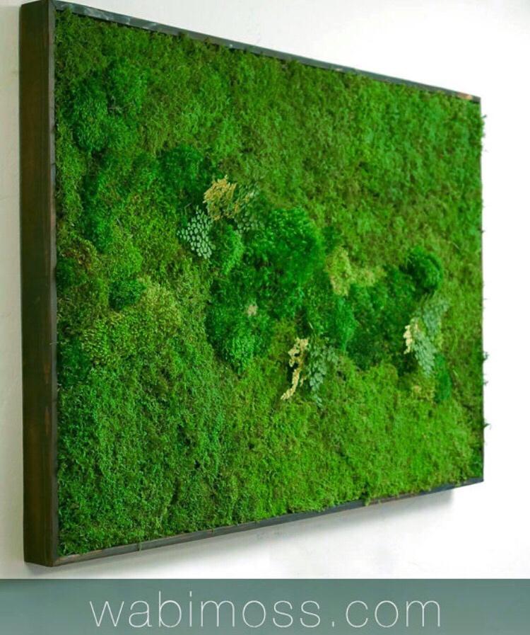 moss wall art 54x36 wabimoss. Black Bedroom Furniture Sets. Home Design Ideas
