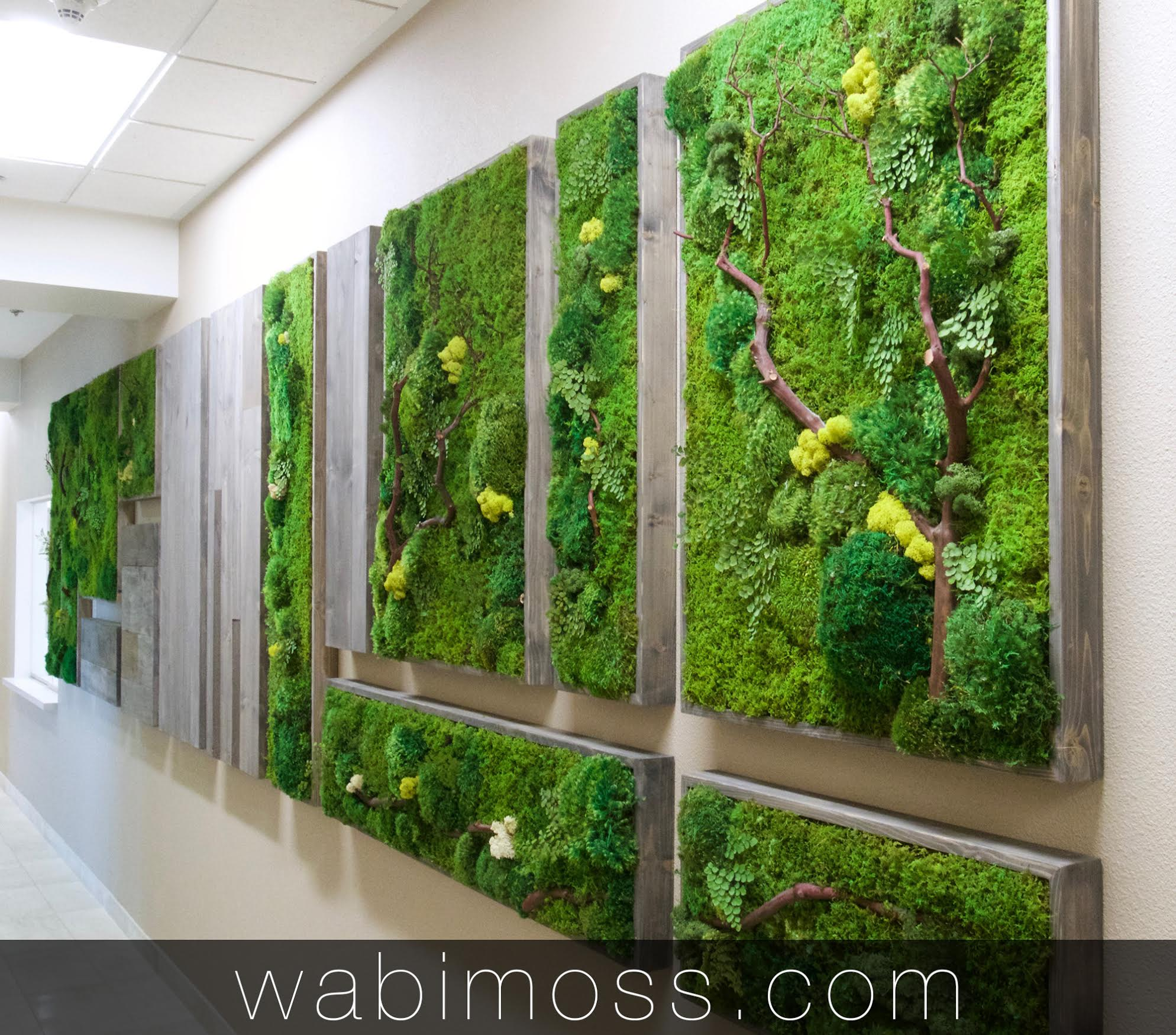 Wabi Moss Moss Wall Art Green Wall Wabi Moss