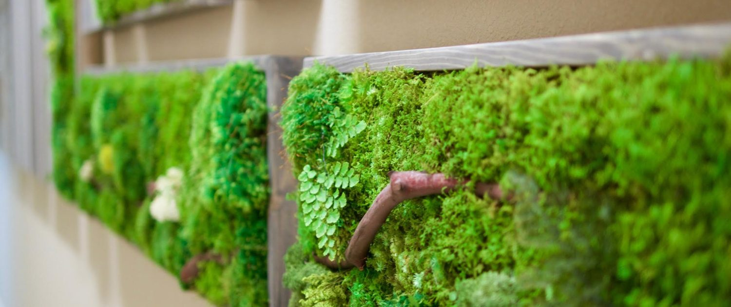moss wall art project