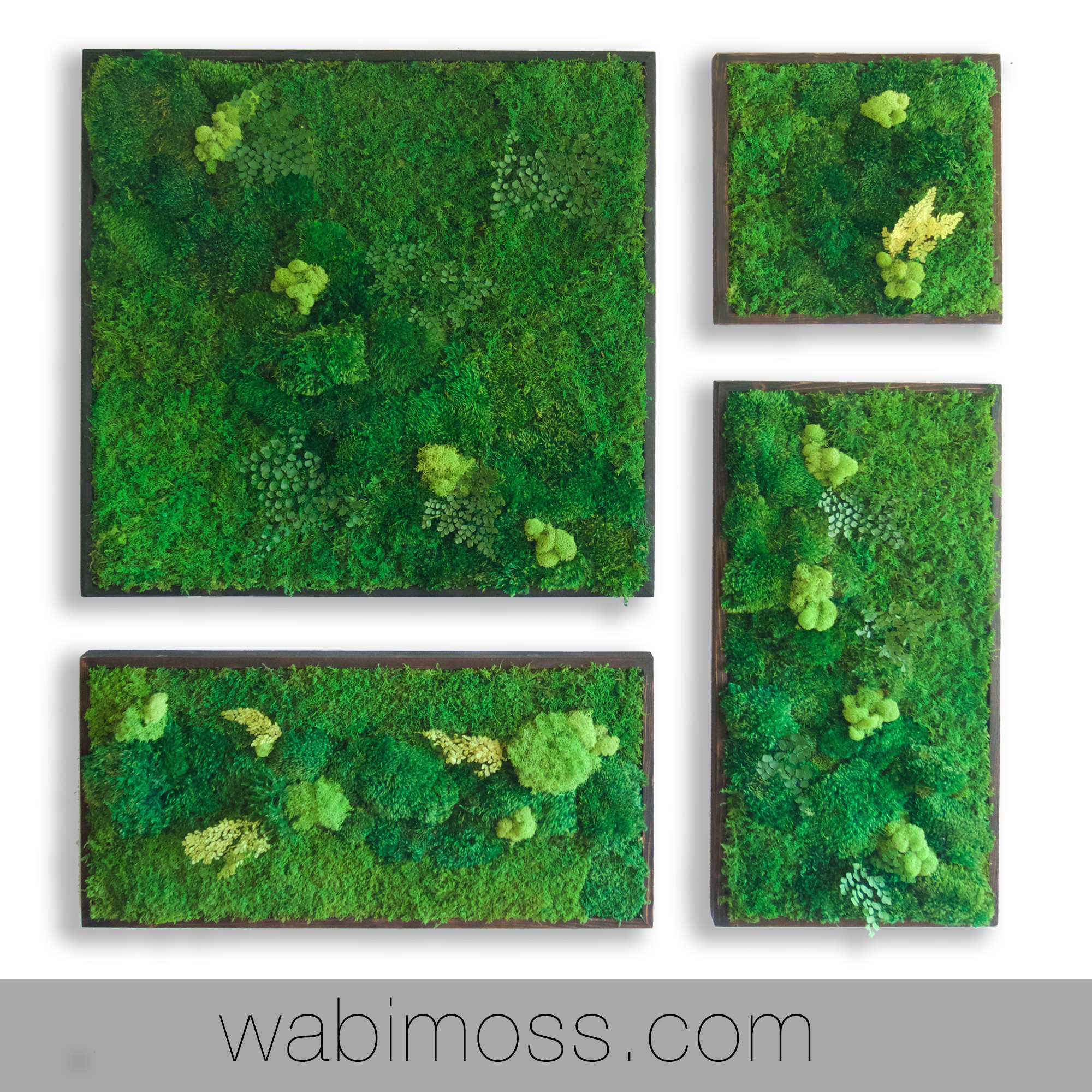 58×58u2033 Real Preserved Moss Wall Art Green Wall Collage No Sticks. No Care Green  Wall Art. Real Preserved Moss And Ferns