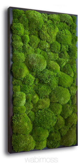 pole moss wall