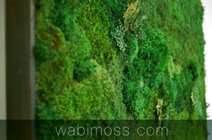 Moss Wall Art 36x54