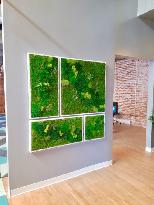large moss collage in white